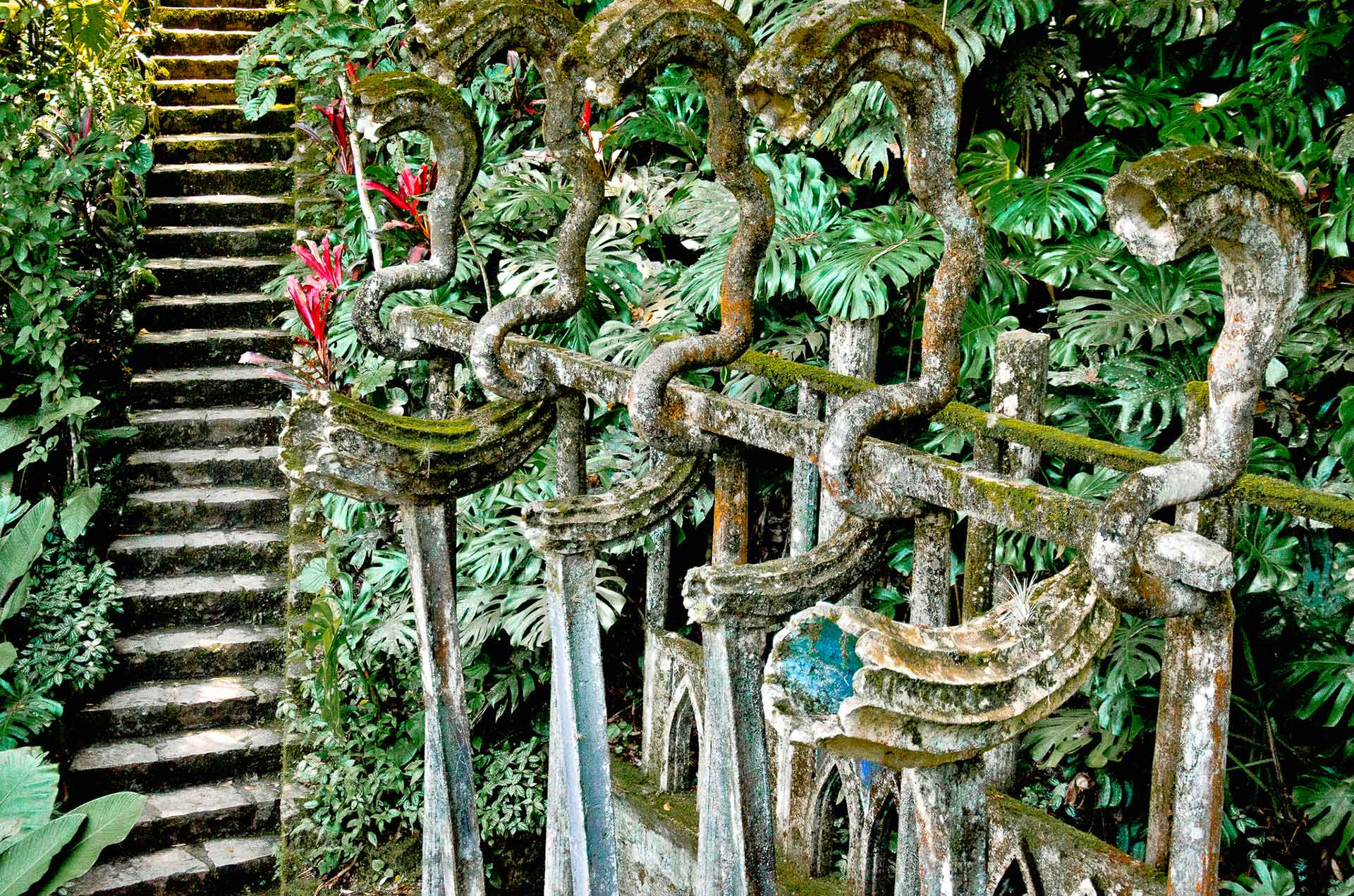 Jardin de edward James en xilitla
